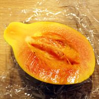 果熟酵素フルーツダイヤ_断食3日目