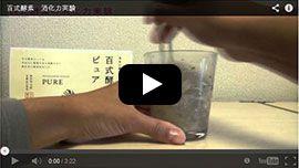 酵素の消化力実験