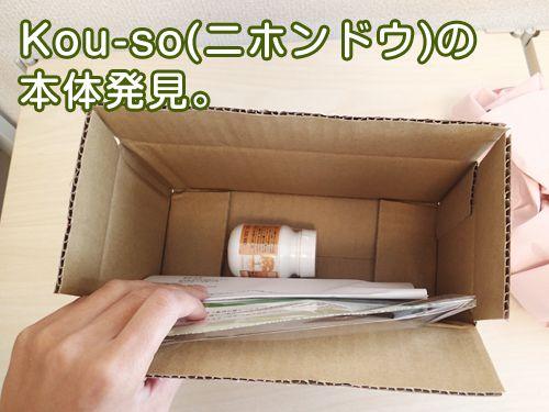 Kou-so(ニホンドウ)のレビュー3